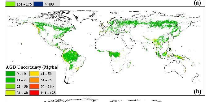 Global forest AGB map