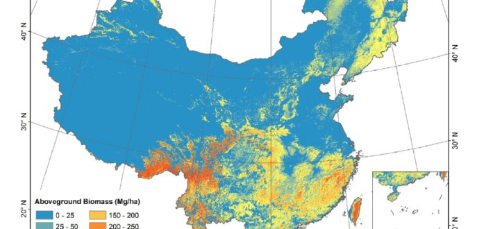 China forest AGB map